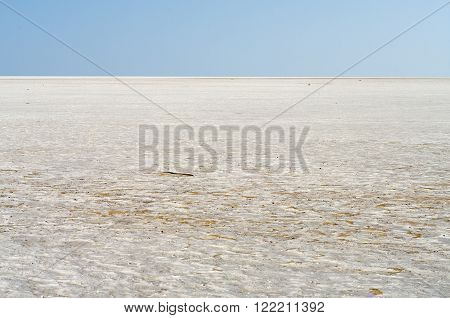 Landscape of the Salt Desert in Sustanate Oman