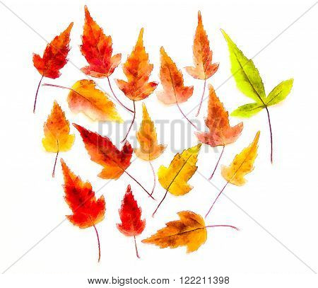 drawing of dried fall leaves of plants  and branches isolated elements on white watercolor paper background for scrapbook, painted wooden planks, object, roughage autumn leaf.
