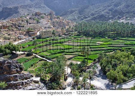 The village Bilad Sayt sultanate Oman with green terraces