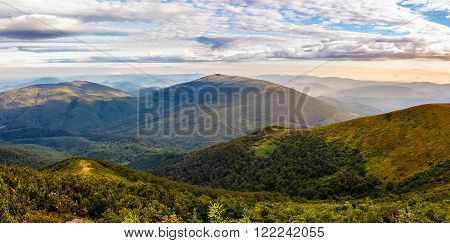 sumer landscape with conifer forest down the hillside to valley bald between mountains in morning sun light