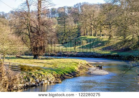 Rural landscape of Kent River in Levens Park in Cumbria, England on sunny day with bare trees.