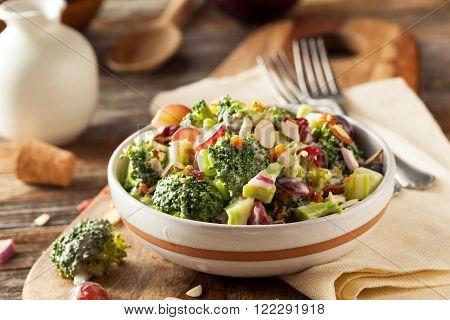 Homemade Green Broccoli Salad