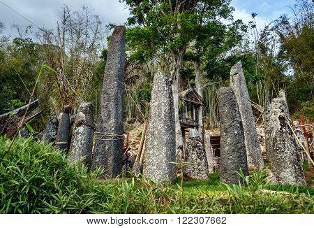 Ceremony Site With Megaliths. Bori Kalimbuang. Tana Toraja. Indonesia