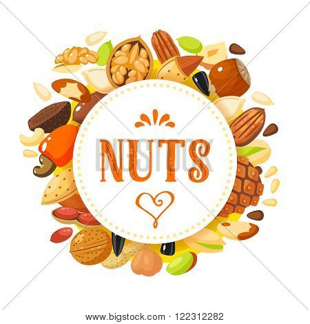 Round label with nuts: hazelnut almond pistachio pecan cashew brazil nut walnut peanut coconut pumpkin seeds sunflower seeds and pine nuts. Vector illustration isolated on white eps 10.