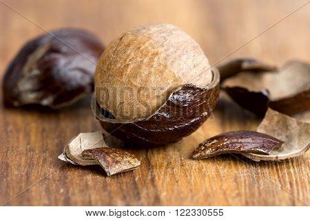 Nutmeg In A Fragmented Nutshell