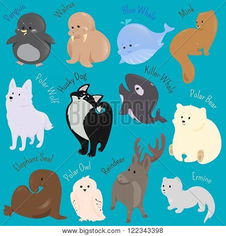 Set of cute cartoon winter north animal icon. Vector illustration for funny polar arctic fauna design. Penguin, walrus, blue whale mink wolf husky dog killer bear elephant sea owl reindeer ermine