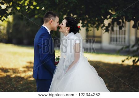 Couple Of Newlyweds, Bride And Groom Holding Hands And Kissing In Park