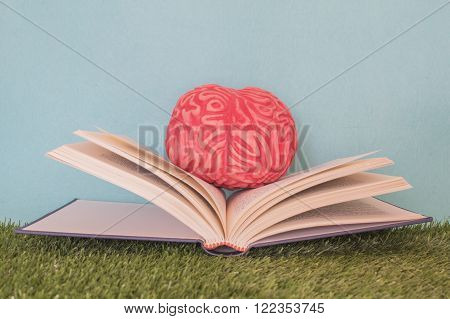 Brain in a book with blue background