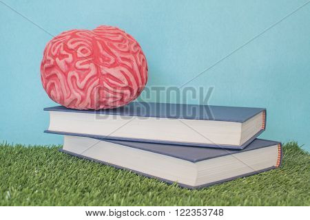 Brain on a book, with blue background