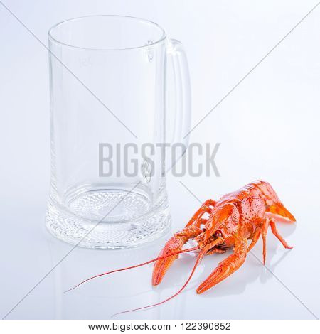 red crayfish with an empty beer glass on white background