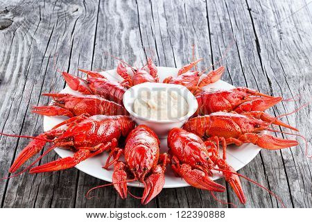 Boiled red crayfishes on a white dish close-up
