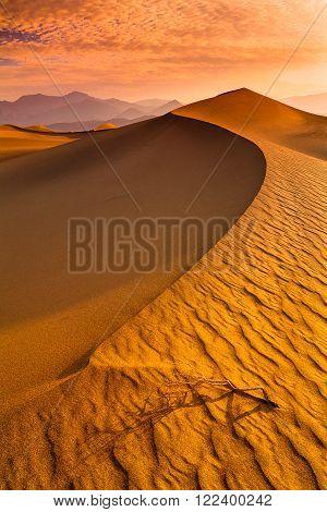 Mesquite Flat Dunes at Death Vakkey National park
