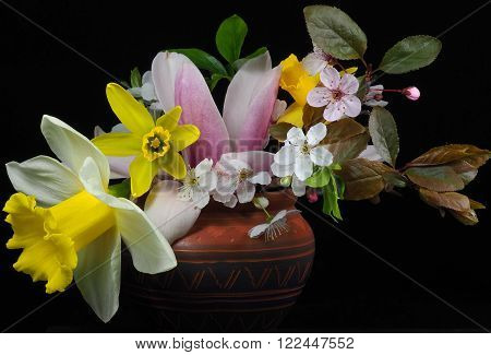 a small bouquet of spring flowers in a terracotta pot with a black backgound