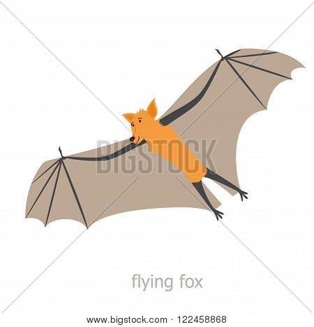 Flying fox. Cartoon character. Australian flying fox soars. Zoo illustration. The fauna of the Australian continent. Wild animal. Cute bat.