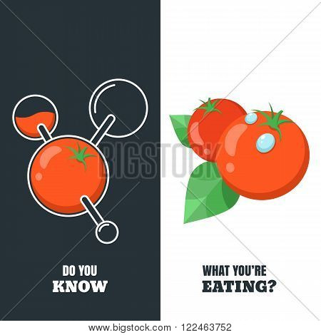 Vector Illustration Of Organic Tomatoes And Chemically Modified Tomato In Molecular Structure.