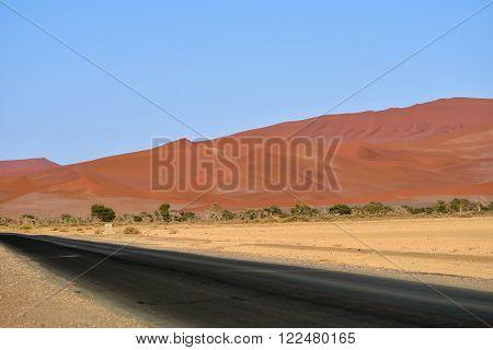 Tar Road In Namib Desert, Namibia, Africa
