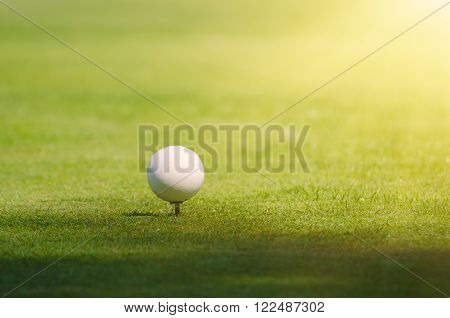 Golf ball on the green lawn background, sunny natural sport image. Competition, achivement and target concept.