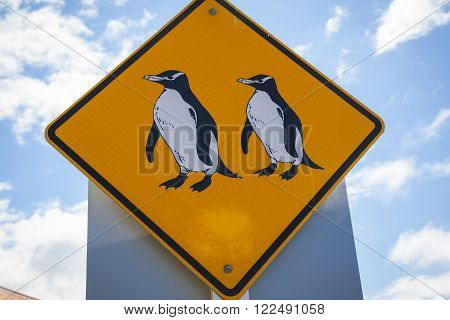Pinguin signs Oamaru New Zealand South Island