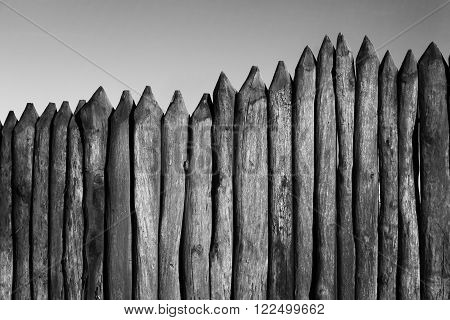 Palisade stockade pilings logs and sky. Abstract background old ancient. Black and white image.