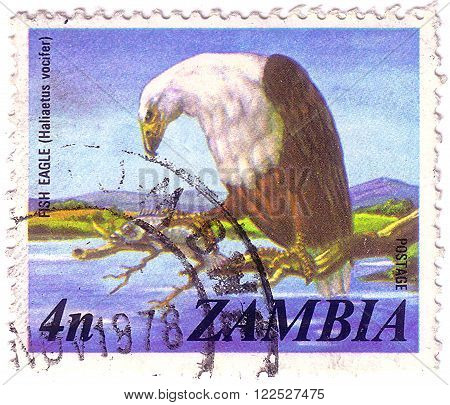 Zambia - Circa 1974: A Stamp Printed In Zambia Shows Image Of A Fish Eagle (haliaetus Vocifer), Circ