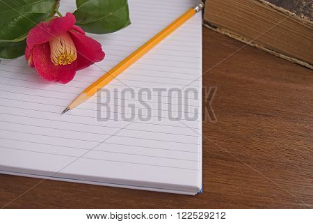 Notebooks and old book with romantic pink flowers camelia on wooden background