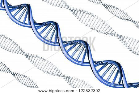 Blue DNA outstanding, dominant gene, isolated on white background poster