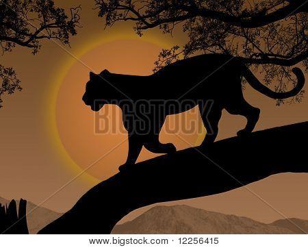 Panther auf einem Baum