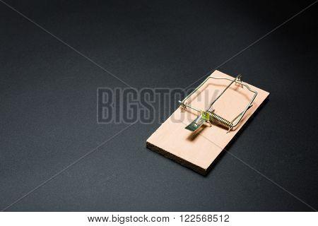 Wooden mousetrap