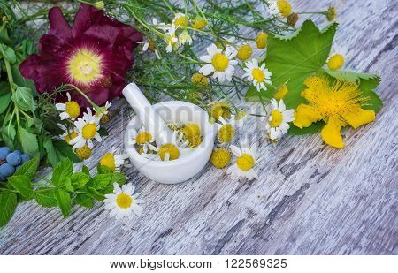 chamomile flowers are crushed in a mortar