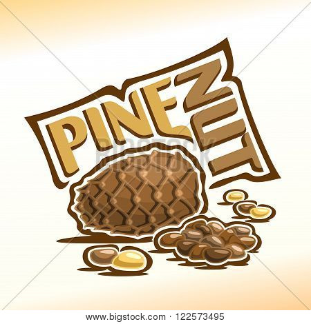 Vector illustration on the theme of the logo for pine nuts, consisting of a cedar cone, peeled nuts kernel and nutlets in the nutshell