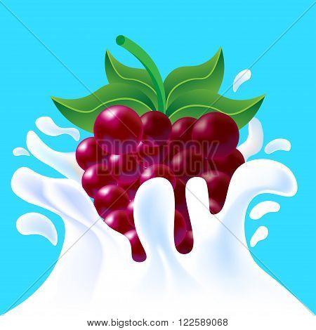 Purple Raspberry In Yoghurt