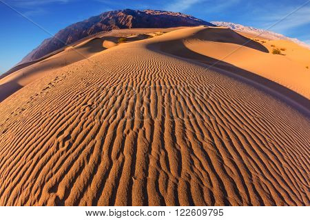 Desert in Mesquite Flat, Death Valley, USA. Waves of orange sand on top of the dunes. Sunrise. The photo was taken Fisheye lens