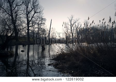 Swamps in autumn. Cool dark lake in primeval forest. Cold melancholic landscape with water vapour. Foggy mystery and mystic wetland with trees. Enigmatic mysterious dark swamp. Eerie situation marsch.