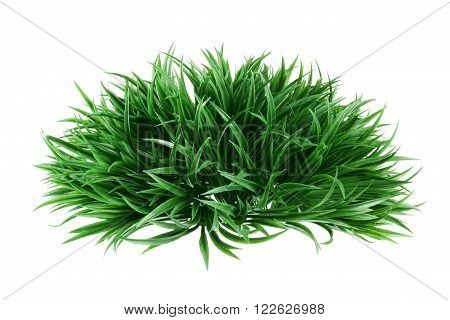 Artificial Grass on an Isolated White Background