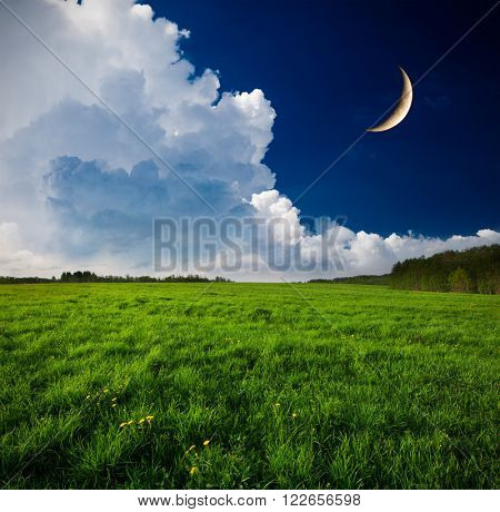 Night and the moon on a green field