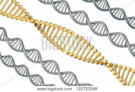 Golden DNA with silver DNA, dominant gene, isolated on white background, 3d rendered poster