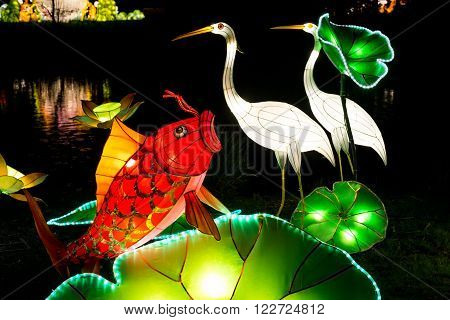 London United Kingdom - February 07 2016: Magical Lantern Festival at Chiswick House And Gardens. Installation of coy fish and heron glowing in the dark