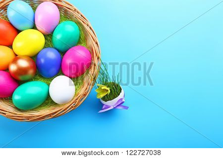 Easter eggs in nest with yellow flower on blue background