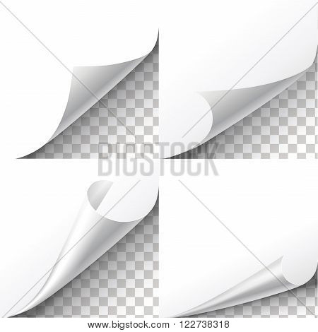 Curl paper corners vector set on transparent background. Sheet sticker,  flip edges, message blank label illustration