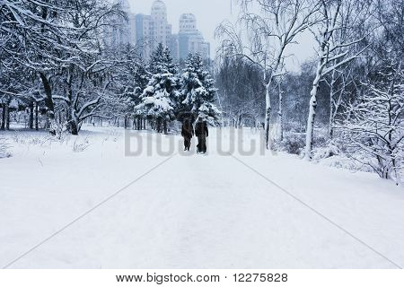 walking family in snowy park