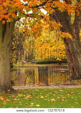 Park and Pond in Autumn Colors with Black Rod Iron Gate