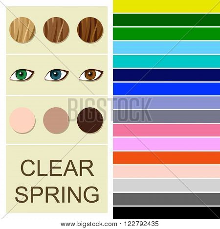 Stock vector seasonal color analysis palette for clear spring type. Type of female appearance