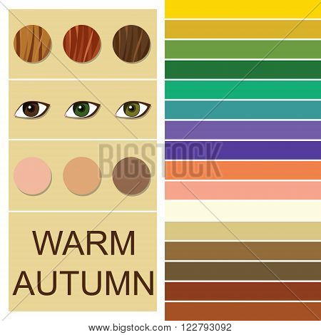 Stock vector seasonal color analysis palette for warm autumn type. Type of female appearance