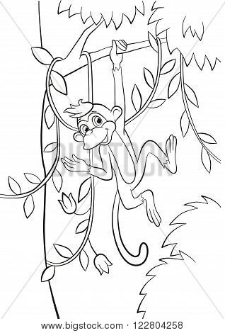 Coloring page. Little cute monkey is hunging in the liana in the forest. It is smiling.