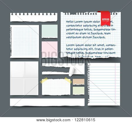 Set of various paper sheets and pieces. White folded page, sqared and lined notepaper, paper banner with hole and paper roll, torn paper with ripped edges, ragged pages, scotch tape, paper clip. Realistic vector template for design with space for text.