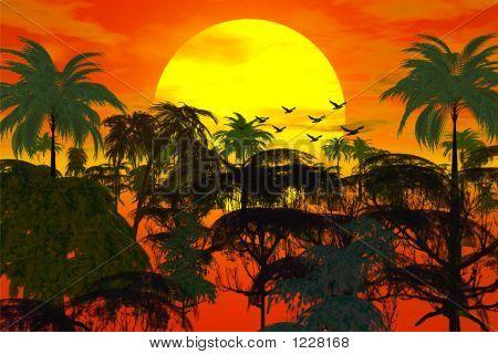 Sunset Over Jungle