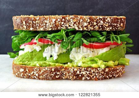 Superfood Sandwich With Whole Grain Bread, Avocado, Egg Whites, Radishes And Pea Shoots On Marble Ag