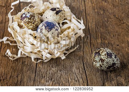 eggs bird quail on a structural board with blurred background close-up.