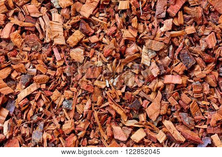 the texture of the crushed oak bark. vegetable raw materials for preparation of tea beverages, medicinal product. alternative medicine
