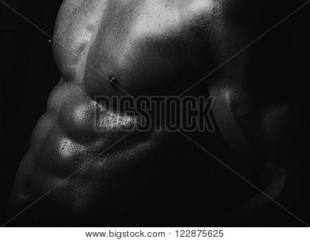 Male muscular sensual strong naked torso with cool abs and pectorals on belly of sporting bodybuilder boy closeup on dark background black and white horizontal picture